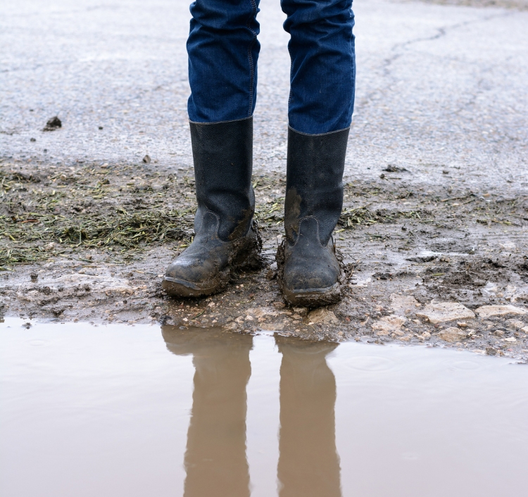 Reflection Of Feet In Muddy Boots A Puddle