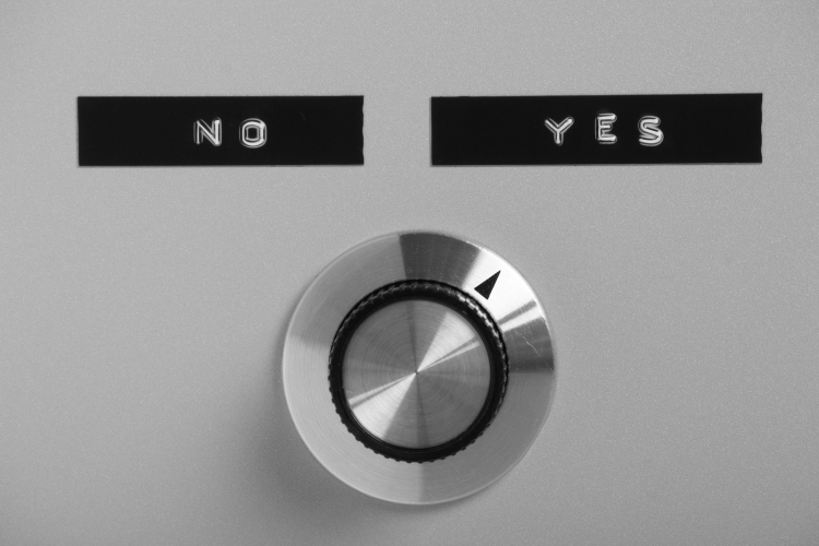 Yes or No Switch