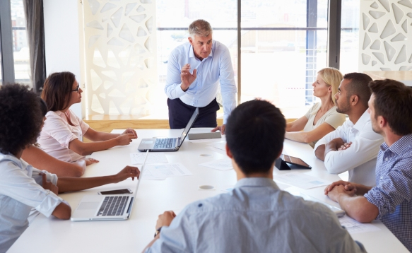 Mature businessman presenting to colleagues at a meeting
